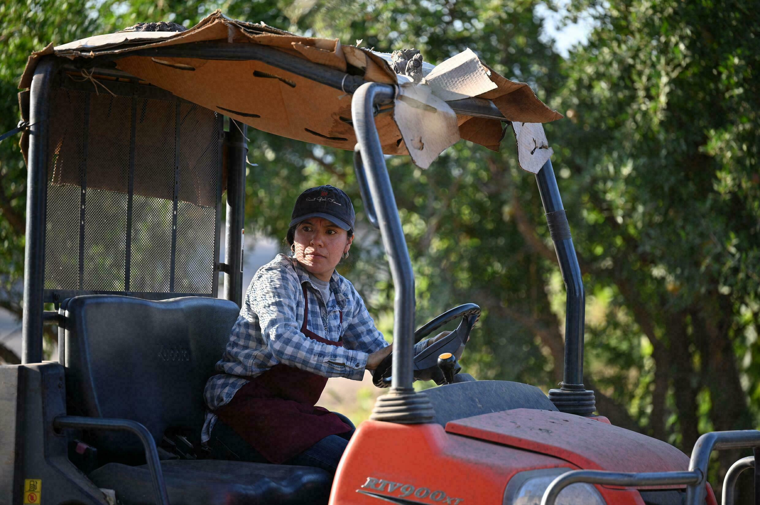Liset Garcia drives a tractor on her farm in Reedley, California -- the drought situation, she says, is 'pretty terrible'