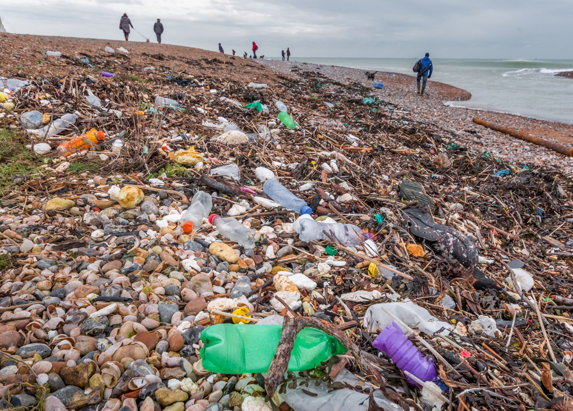 Plastic pollution on a beach in East Sussex
