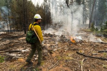 a man in fire protective gear stands in a forest next to fire